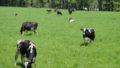 個別相談:農業応援プラン